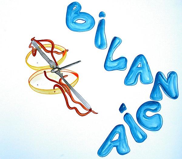 StelleOccitane  Lo Zodiaco  Bilancia
